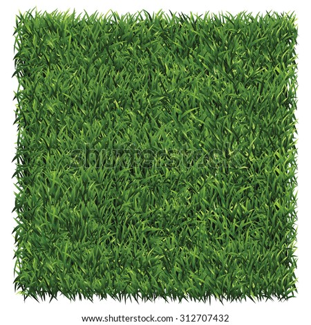 Square of dark green grass. A lawn dark green background vector.