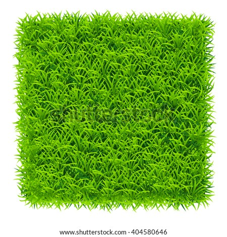 square of grass - stock vector