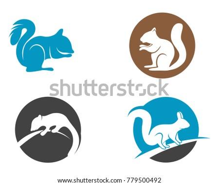 Squirrel Animals Logo Symbols Template Icons Stock Vector (2018 ...