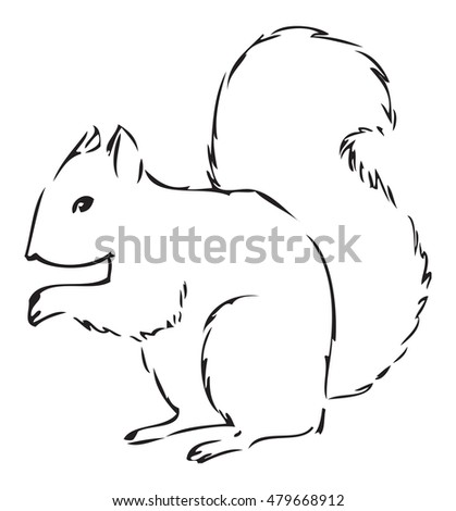 Squirrel Line Art