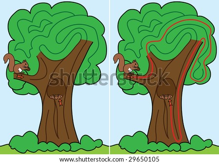 Squirrel maze for kids with a solution - stock vector