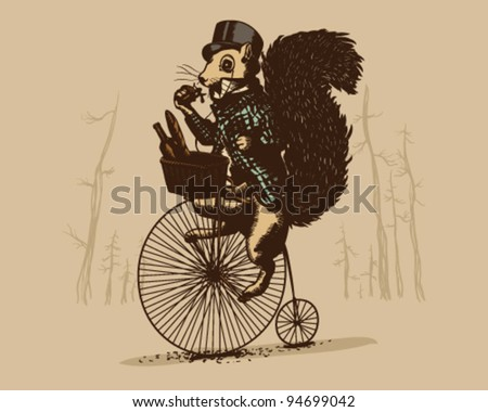 Squirrel on a vintage bicycle - stock vector