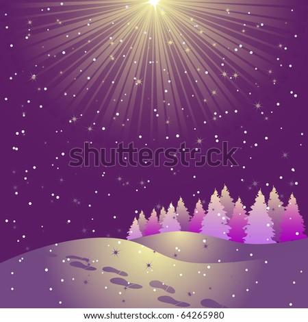 Star shining on the sky - stock vector