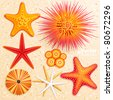 Starfish and  sea urchins collection on sand background. Vector illustration. - stock photo