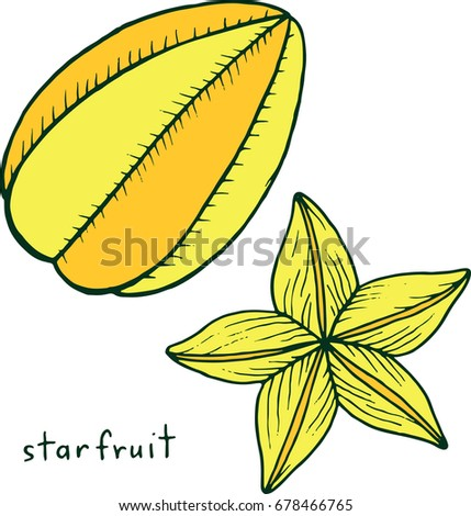 Starfruit Coloring Page Graphic Vector Colorful Doodle Art For Books Adults Tropical