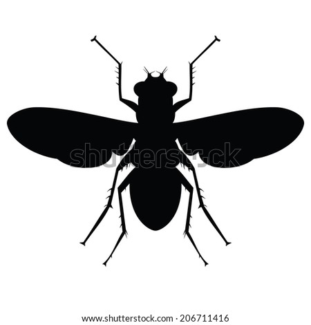 Stencil black flies. Vector. - stock vector