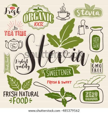 Organic Ecology Web Icon Logo Set Stock Vector 259480025