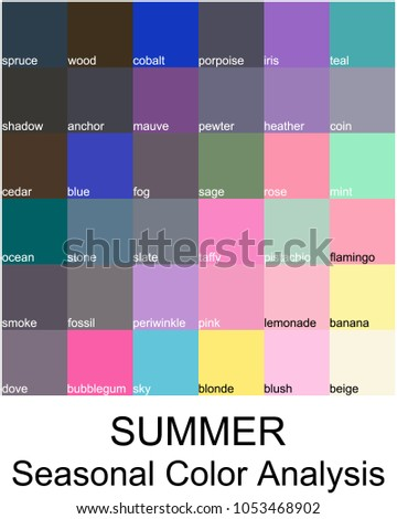Stock Vector Color Guide With Names Seasonal Analysis Palette For Summer Type