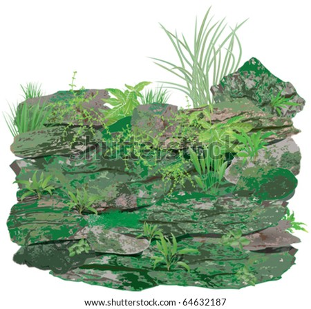 Stone or rock wall with plants and moss - stock vector