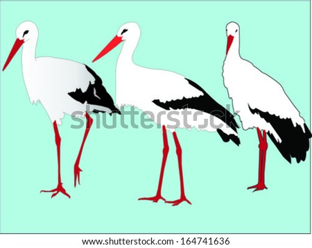 storks  collection - vector - stock vector
