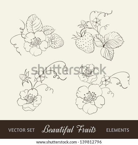 Strawberry elements isolated on white background. - stock vector