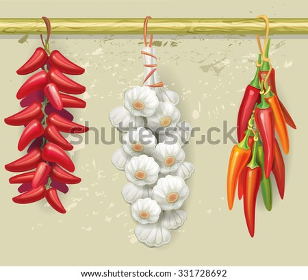 Strings of garlic and red peppers - stock vector