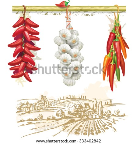 Strings of red peppers against country landscape - stock vector