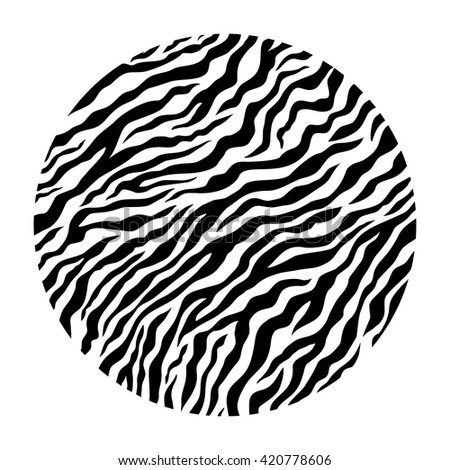 Stripe animal skin. Black and white pattern. Vector isolated