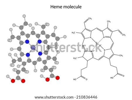 Structural chemical formula of  heme molecule, 2d illustration, isolated on white background, skeletal + circles & sticks style vector, eps8