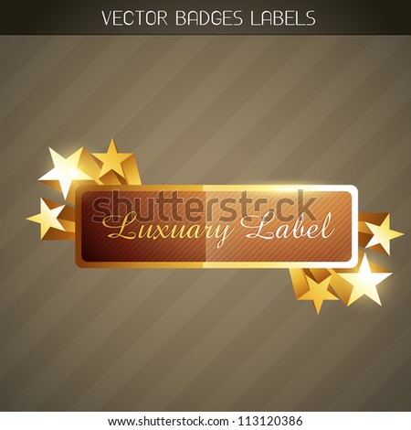 stylish shiny vector golden label with space for your text - stock vector