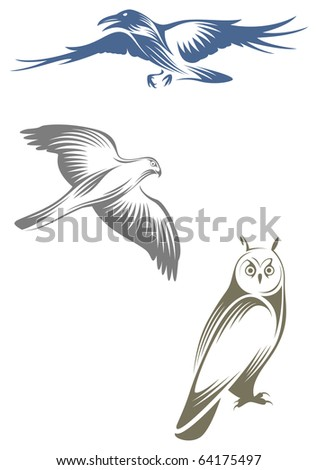 Stylized birds - raven, hawk and owl - stock vector