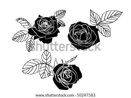 Stylized black and white roses - stock vector