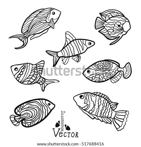 Ornamental Fish River Sea Childrens