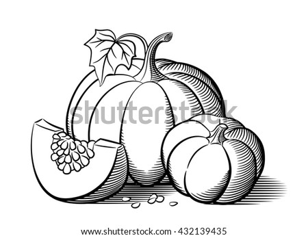 Stylized image pumpkins big pumpkin small stock vector for Pumpkin seed coloring page