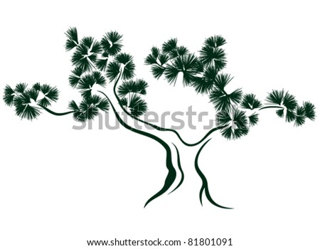 stylized pine tree vector illustration - stock vector