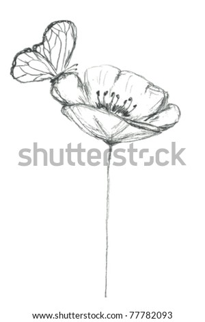 Stylized sketch of poppy flower with butterfly, VECTOR