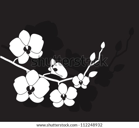stylized white orchid on a black background - stock vector