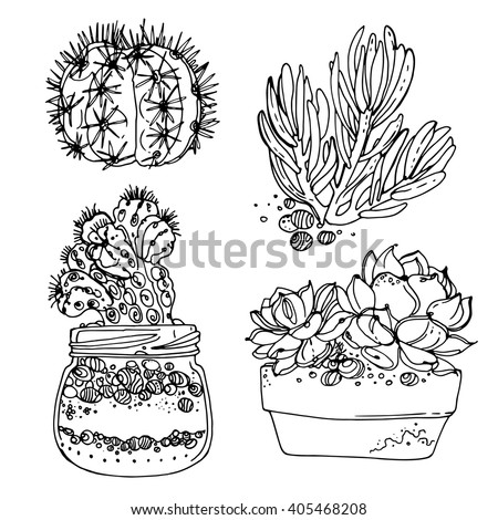 desert flower coloring pages - photo#8