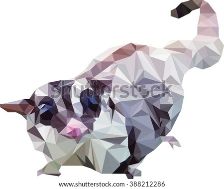 Sugar glider , suggie on white background - stock vector