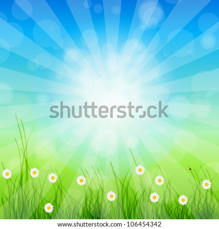 Summer Abstract Background with grass and chamomile against sunny sky. Vector illustration. - stock vector