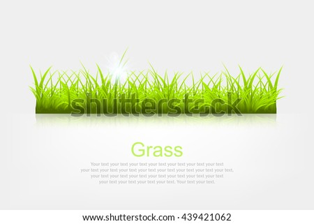 Summer background with grass a vector illustration - stock vector