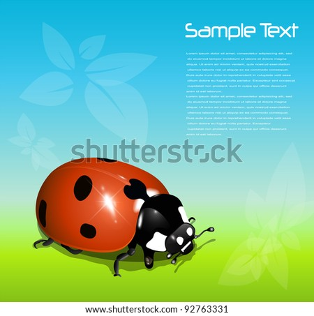 Summer background with ladybug, vector.