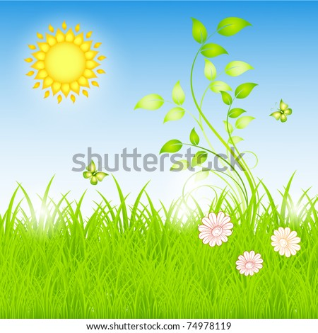 Summer floral background with the sun and grass.