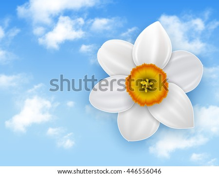 Summer flower background - narcissus white flower and blue sky with white clouds. - stock vector