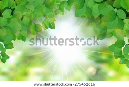 Summer fresh leaf green leaves with sun rays. vector illustration  - stock vector