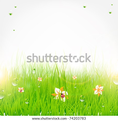 Summer grass banner with flowers, ladybird, drops and sun shine. eps 10. - stock vector