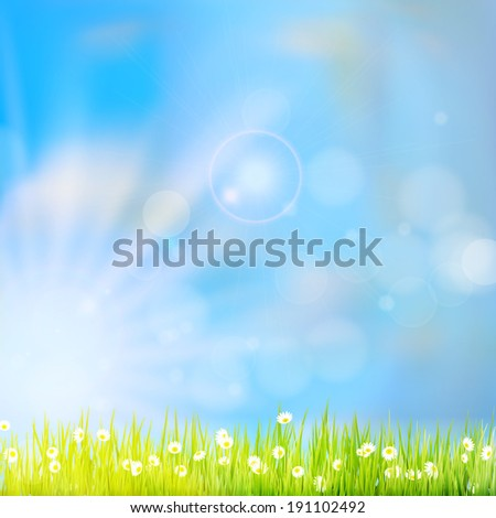 Summer grass in sun light and defocused sky on background. And also includes EPS 10 vector - stock vector