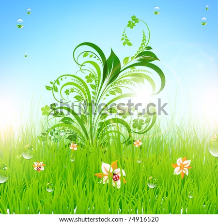 Summer grass wallpaper with flowers, ladybird, drops and sun shine. eps 10. - stock vector