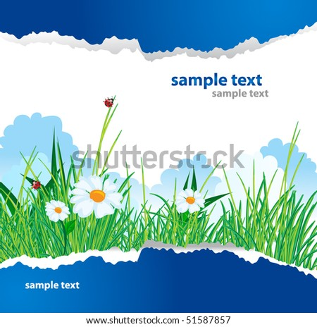 Summer greeting card. Vector illustration - stock vector