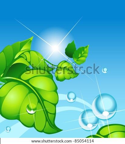 summer landscape with green sheet and droplet of water