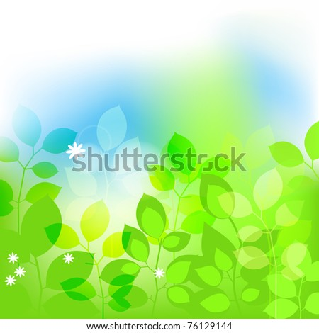 Summer leaves background - stock vector