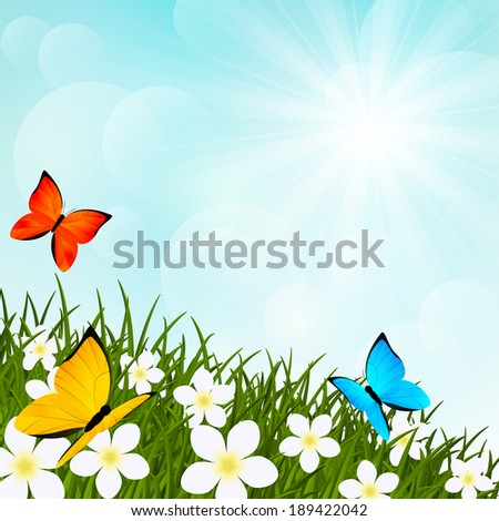 Summer meadow with flowers and butterflies