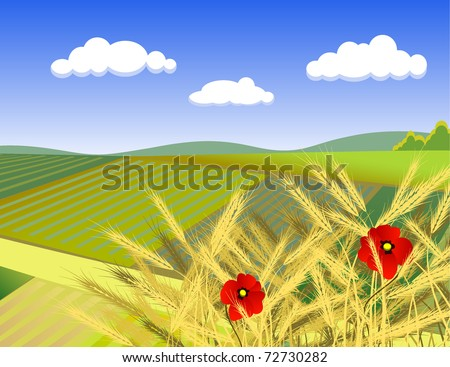 summer rural landscape with poppy - stock vector