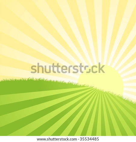 Summer sunrise landscape with grass - vector illustration