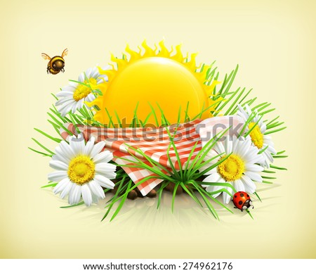 Summer, time for a picnic, nature, outdoor recreation, a tablecloth and sun behind, grass, flowers of camomile, a ladybug and a bee in the garden, vector illustration showing the summertime - stock vector