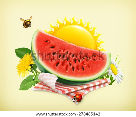 Summer, time for a picnic, watermelon, nature, outdoor recreation, a tablecloth and sun behind, grass, flowers of chamomile and dandelion, vector illustration showing the summertime - stock vector