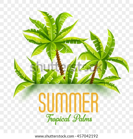 Summer tropic coconut palms in jungle forest tropical plants green leaves nature fragment 3d effect shadows copyspace design layout travel concept vector illustration isolated on white