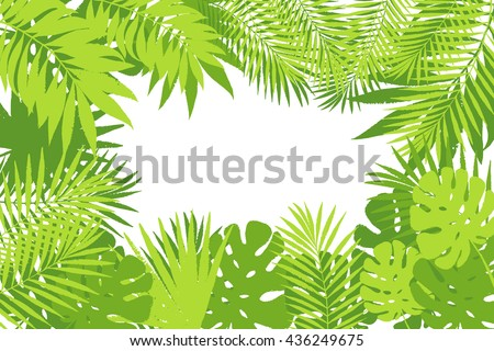 Summer Tropical Palm Tree Leaves Background Vector Grunge Design For Card Poster Wallpaper