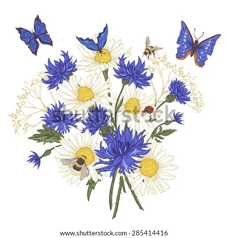 Summer Vintage Floral Bouquet. Greeting Card with Blooming Chamomile Ladybird Daisies Cornflowers Bumblebee Bee and Blue Butterflies. Vector Illustration on White Background - stock vector