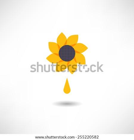 Sunflower icon - stock vector